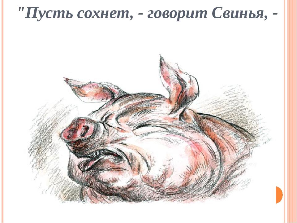 """""""Пусть сохнет, - говорит Свинья, -"""