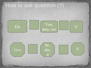 How to ask question (?) Do You, they, we V Does he, she, it V