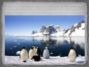 """Антарктида стала всемирным природным заповедником """"страной науки"""". Здесь раб"""