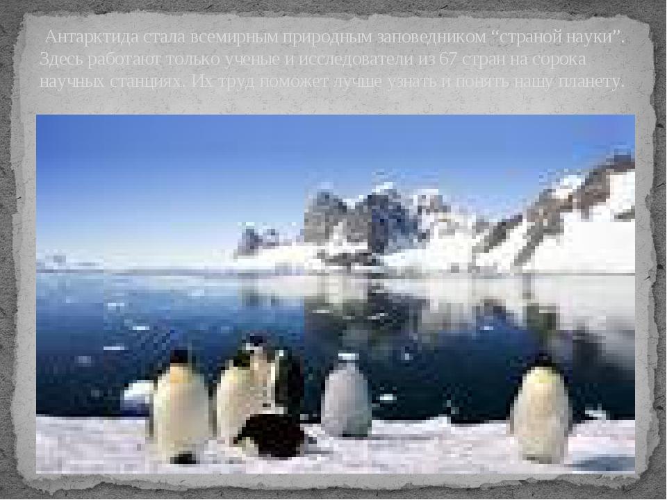 """Антарктида стала всемирным природным заповедником """"страной науки"""". Здесь раб..."""