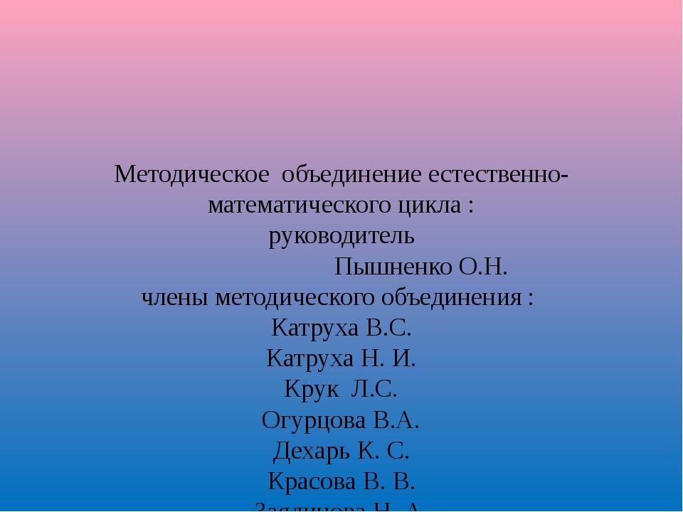 Методическое объединение естественно-математического цикла : руководитель Пы...