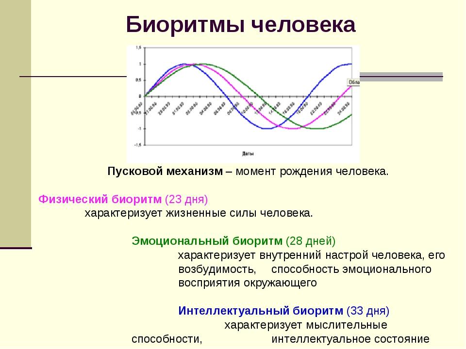 Биоритмы человека Пусковой механизм – момент рождения человека. Физический би...