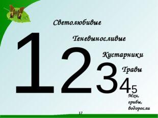 12345 Светолюбивые Теневыносливые Кустарники Травы Мхи, грибы, водоросли 17