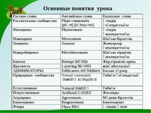 Основные понятия урока Русское слово Английское слово Казахское слово Растит