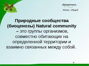 Природные сообщества (биоценозы) Natural community – это группы организмов,