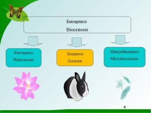 6 Микробиоценоз Microbiocenosis Зооценоз Zoozoos Фитоценоз Phitocenosis Биоце
