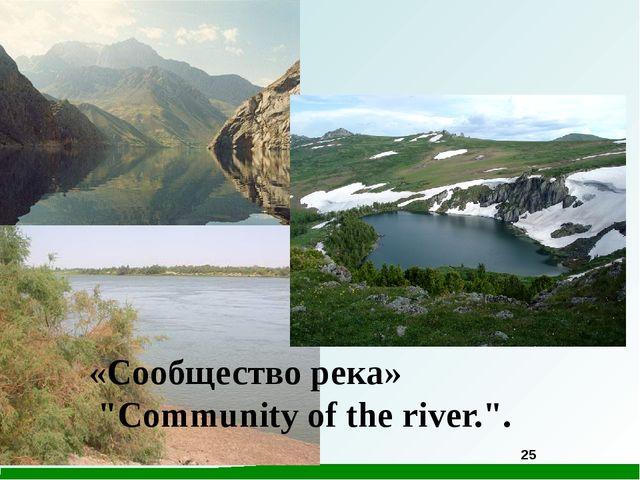 """«Сообщество река» """"Community of the river."""". 25"""