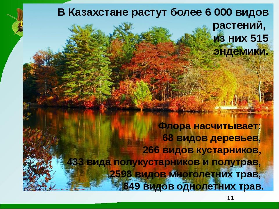 В Казахстане растут более 6 000 видов растений, из них 515 эндемики. Флора на...