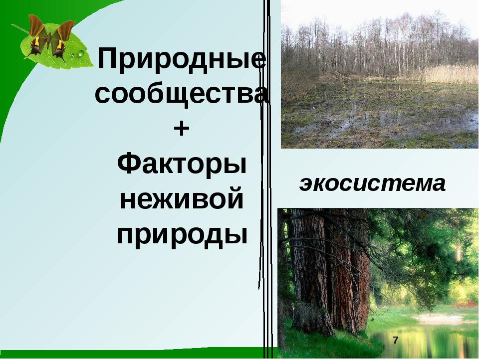 Природные сообщества + Факторы неживой природы экосистема 7