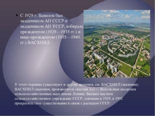 С 1929 г. Вавилов был академиком АН СССР и академиком АН УССР, избирался през