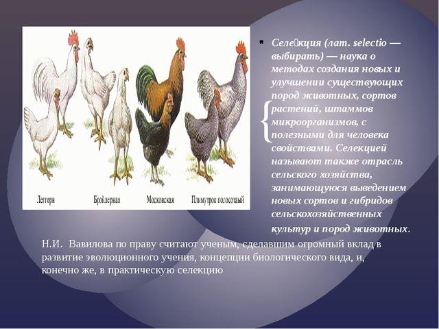 Селе́кция (лат. selectio — выбирать) — наука о методах создания новых и улуч...