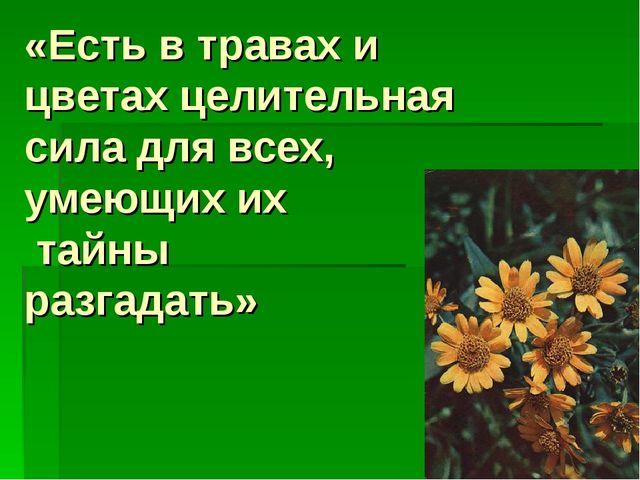 «Есть в травах и цветах целительная сила для всех, умеющих их тайны разгадать»