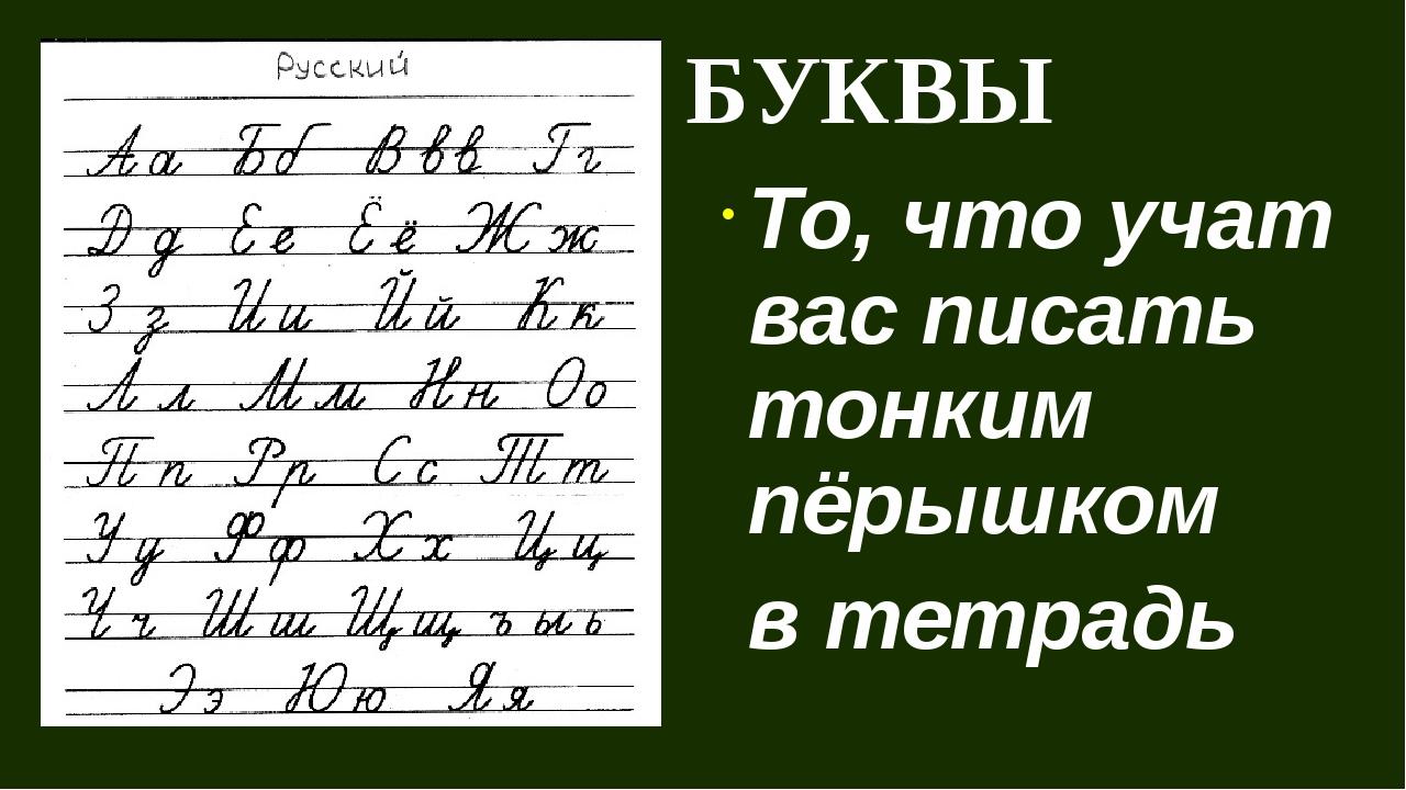 БУКВЫ То, что учат вас писать тонким пёрышком в тетрадь