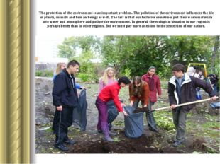 The protection of the environment is an important problem. The pollution of t