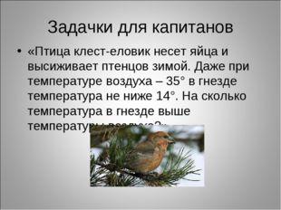 Задачки для капитанов «Птица клест-еловик несет яйца и высиживает птенцов зим