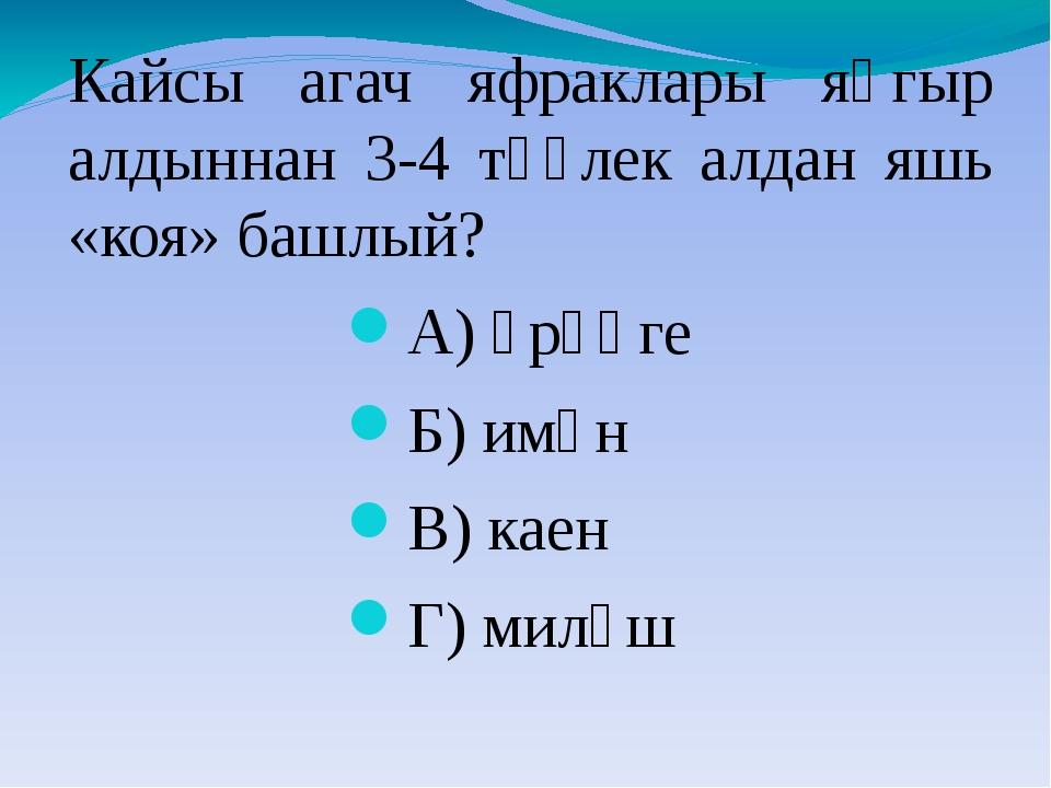 Кайсы агач яфраклары яңгыр алдыннан 3-4 тәүлек алдан яшь «коя» башлый? А) өрә...