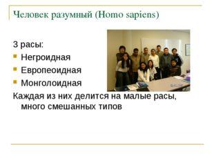 Человек разумный (Homo sapiens) 3 расы: Негроидная Европеоидная Монголоидная