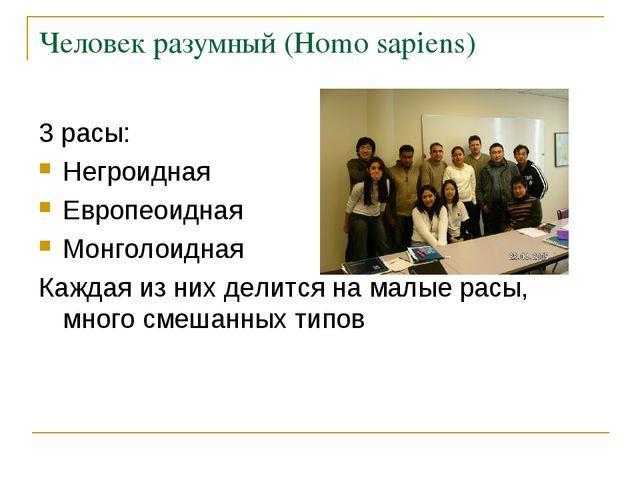 Человек разумный (Homo sapiens) 3 расы: Негроидная Европеоидная Монголоидная...