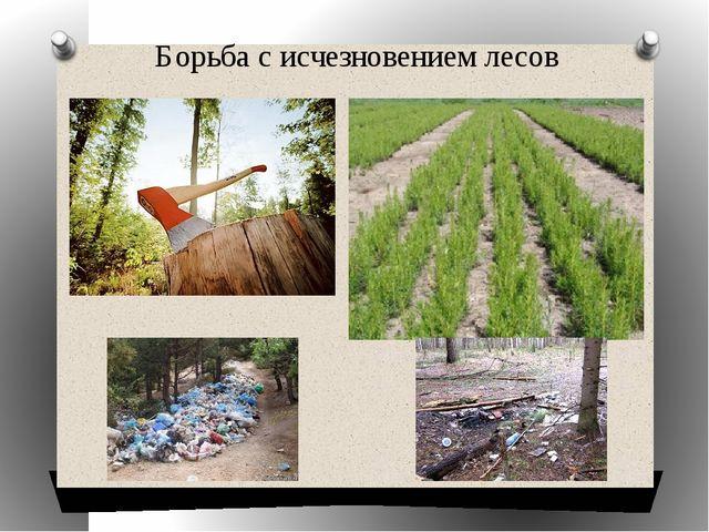 Борьба с исчезновением лесов