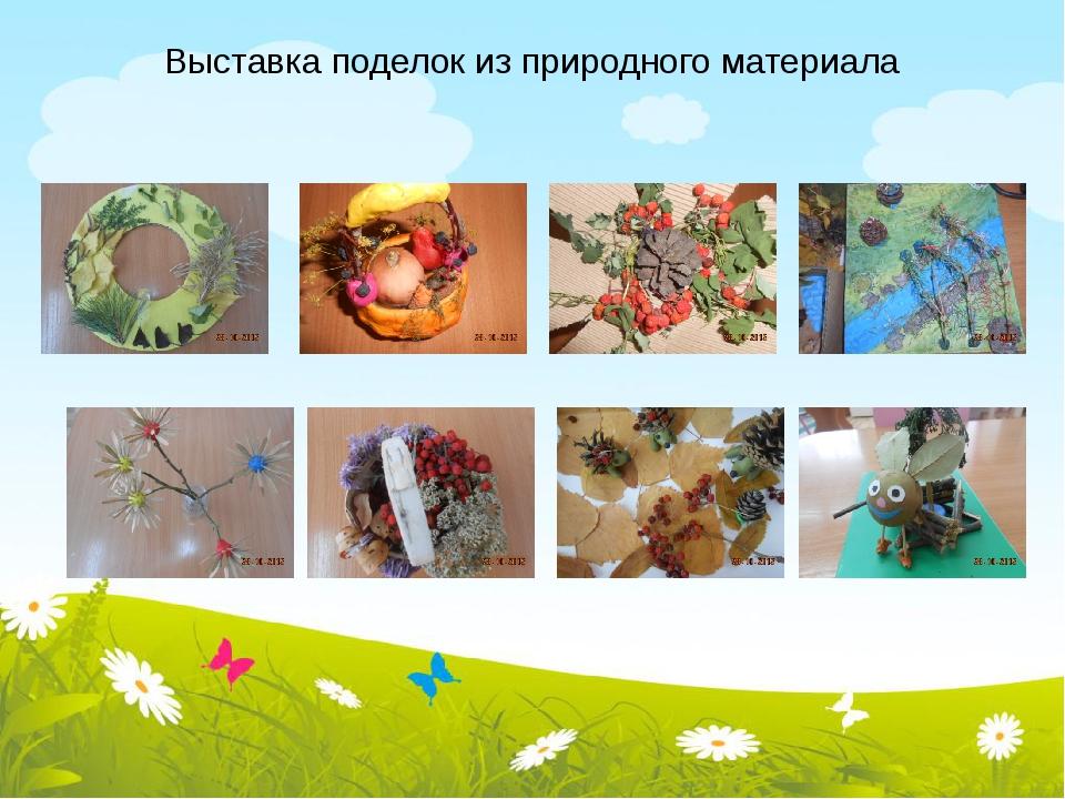 Выставка поделок из природного материала