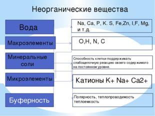 Неорганические вещества Полярность, теплопроводимость теплоемкость Макроэлеме