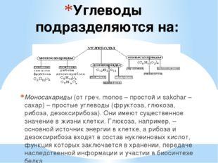 Углеводы подразделяются на: Моносахариды(от греч. monos – простой и sakchar