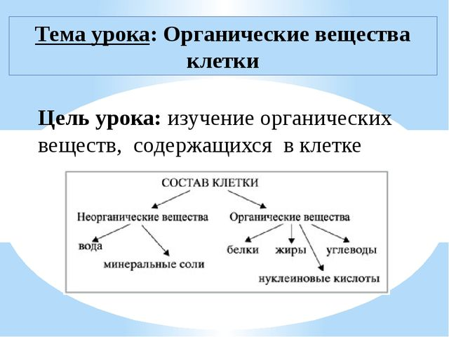 Цель урока: изучение органических веществ, содержащихся в клетке Тема урока:...