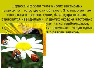 Окраска и форма тела многих насекомых зависит от того, где они обитают. Это