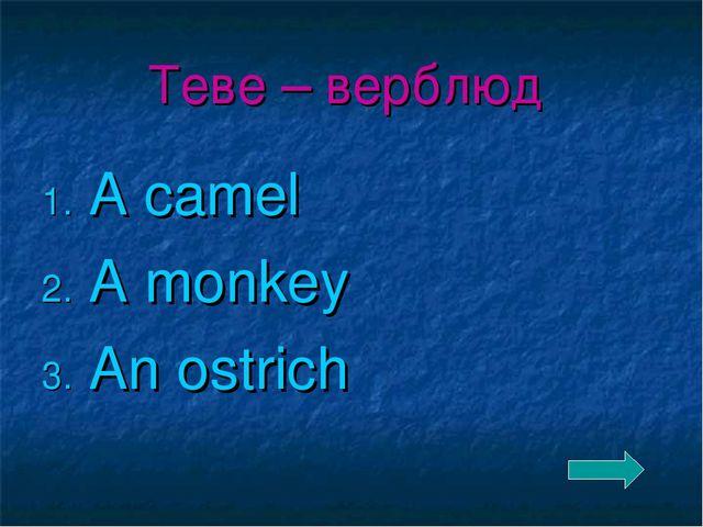 Теве – верблюд A camel A monkey An ostrich