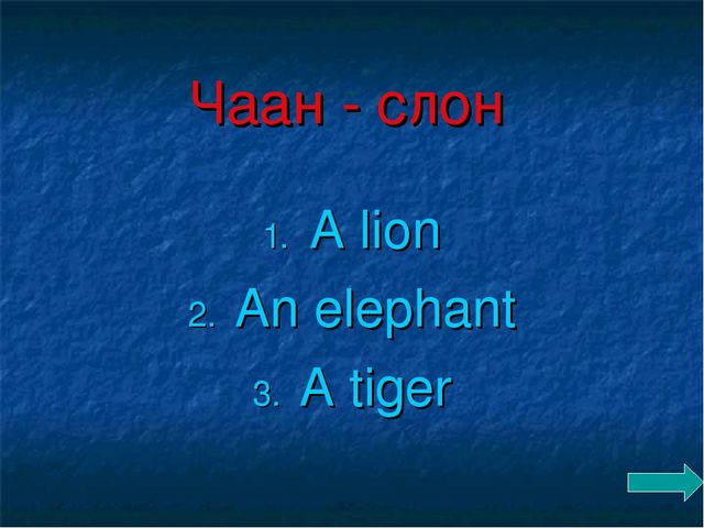 Чаан - слон A lion An elephant A tiger