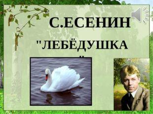 "С.ЕСЕНИН ""ЛЕБЁДУШКА"""