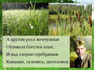 А кругом роса жемчужная Отливала блестки алые, И над озером серебряным Камыш