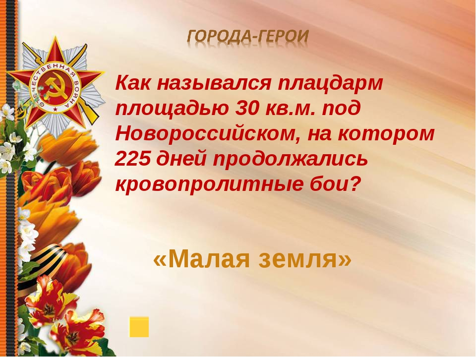Как назывался плацдарм площадью 30 кв.м. под Новороссийском, на котором 225 д...