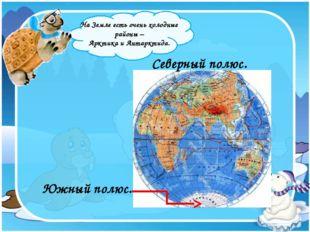 На Земле есть очень холодные районы – Арктика и Антарктида. Южный полюс. Сев