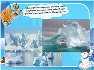 Антарктида – огромный участок суши, покрытый толстым слоем льда. В этом райо