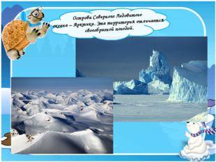 Острова Северного Ледовитого океана – Арктика. Эта территория отличается сво