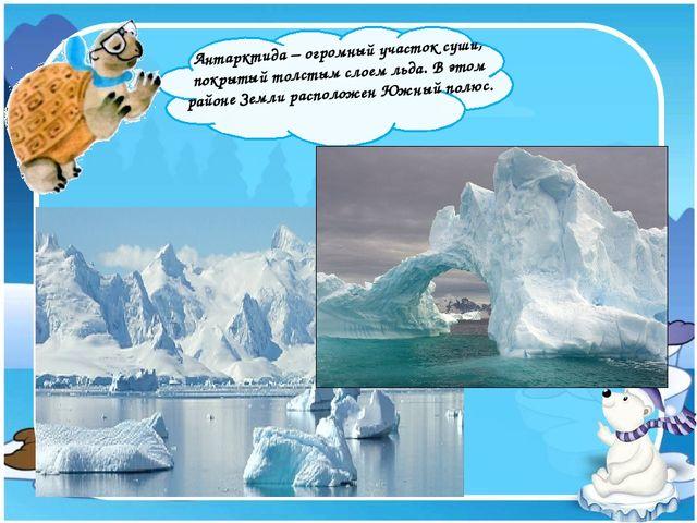 Антарктида – огромный участок суши, покрытый толстым слоем льда. В этом райо...