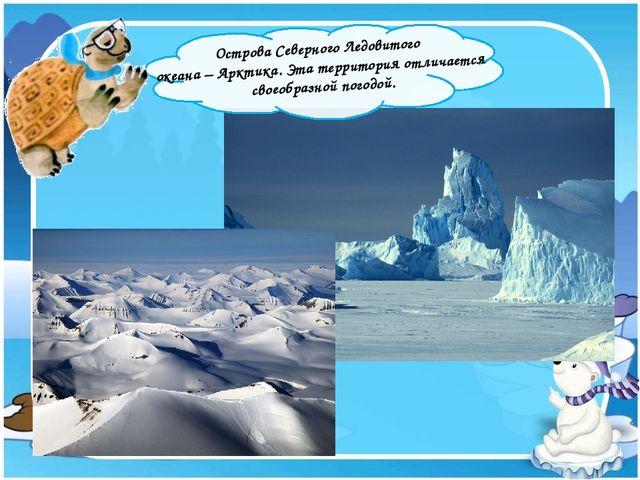 Острова Северного Ледовитого океана – Арктика. Эта территория отличается сво...