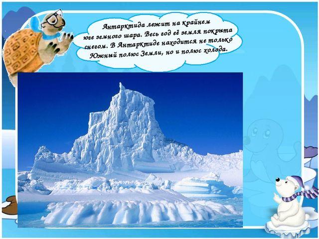 Антарктида лежит на крайнем юге земного шара. Весь год её земля покрыта снег...