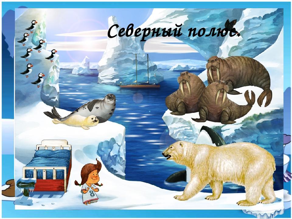 Северный полюс.