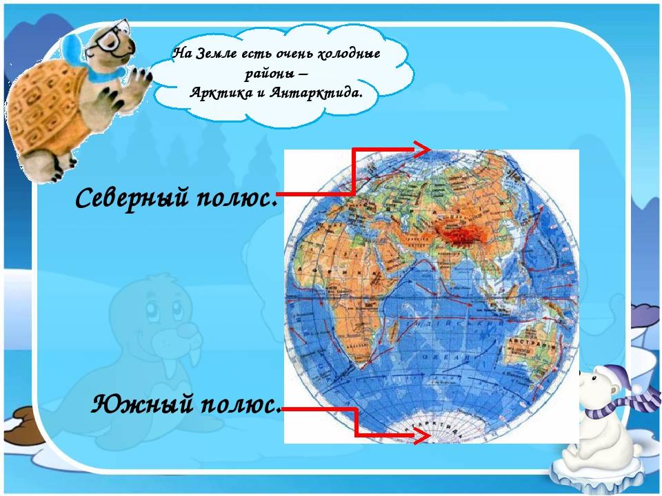 На Земле есть очень холодные районы – Арктика и Антарктида. Южный полюс. Сев...