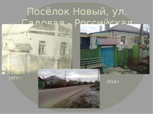 Посёлок Новый, ул. Садовая - Российская 1975 г. 2016 г.