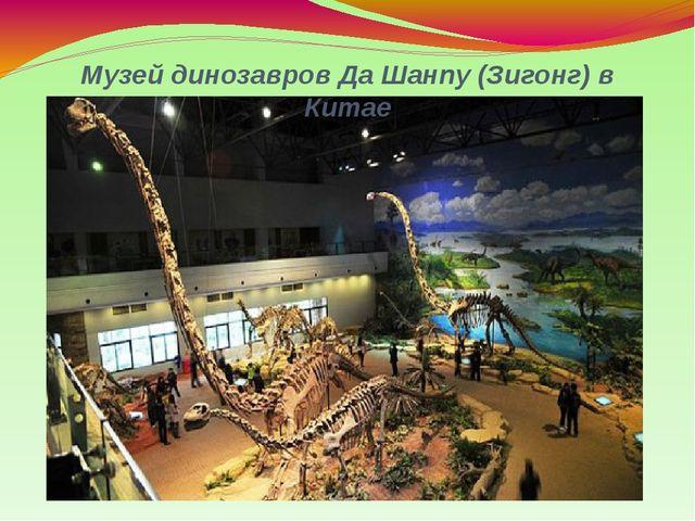 Музей динозавров Да Шанпу (Зигонг) в Китае