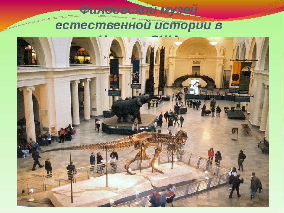 Филдовский музей естественной истории в Чикаго, США