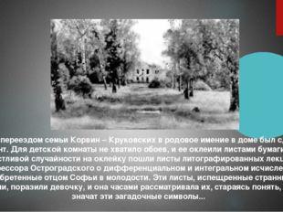 Перед переездом семьи Корвин – Круковских в родовое имение в доме был сделан
