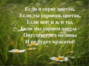 Если я сорву цветок, Если ты сорвешь цветок, Если все: и я, и ты, Если мы сор