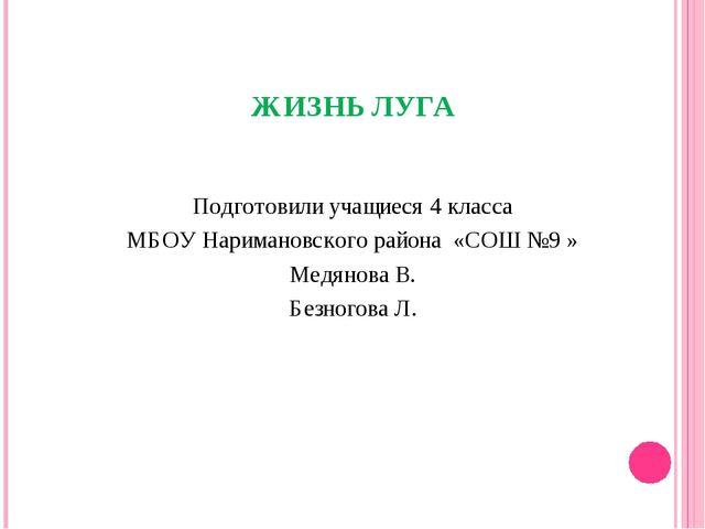 ЖИЗНЬ ЛУГА Подготовили учащиеся 4 класса МБОУ Наримановского района «СОШ №9 »...