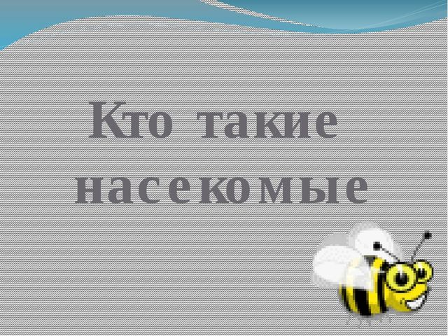 Кто такие насекомые