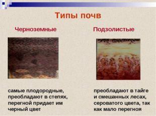 Типы почв Черноземные Подзолистые самые плодородные, преобладают в степях, пе