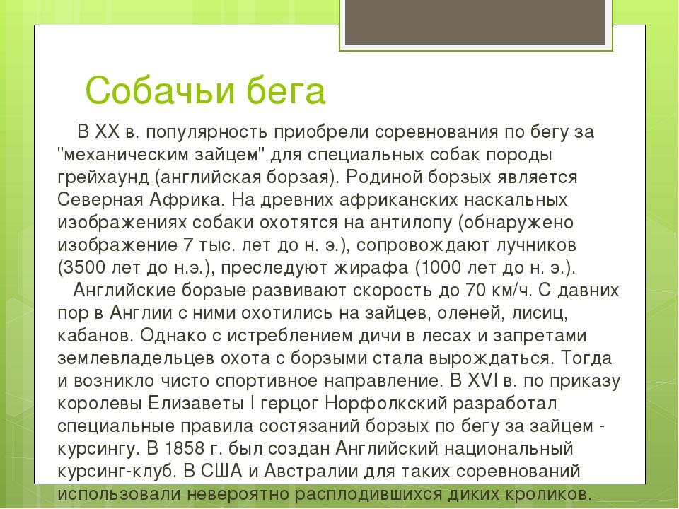 """Собачьи бега В ХХ в. популярность приобрели соревнования по бегу за """"механич..."""